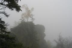 Harz im Oktober 2007