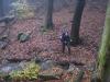 Harz_Herbst07-018