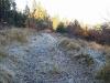 Harz_Herbst07-052