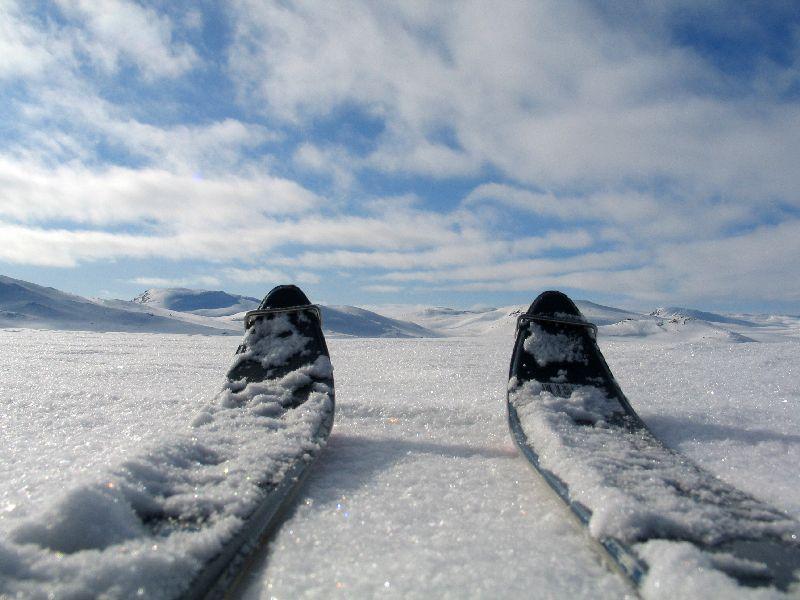 hardangervidda2009-124.jpg