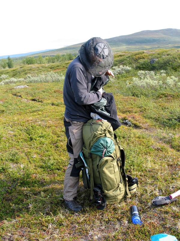 Sarek2008_019.JPG