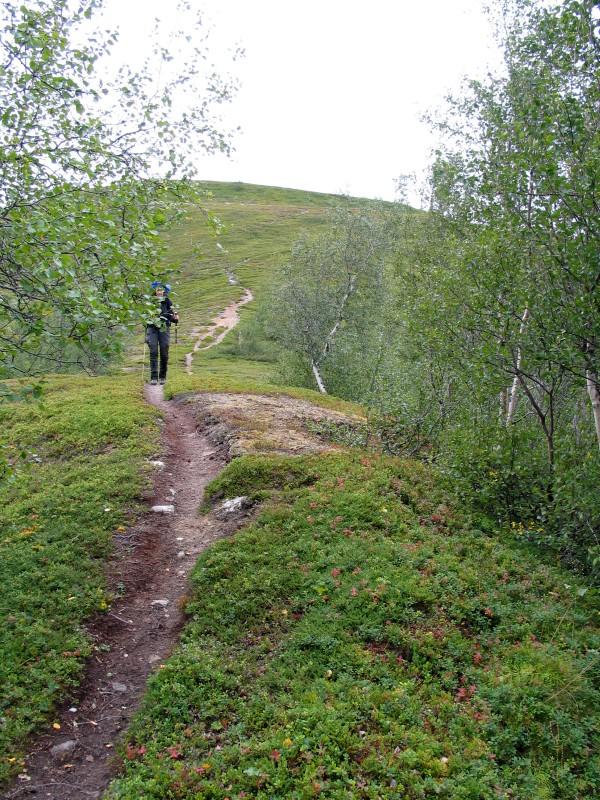 Sarek2008_347.JPG